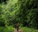 Forest rangers patrolling at the Ipo Dam watershed at Norzagaray, Bulacan, three hours north of Manila. AFP / NOEL CELIS